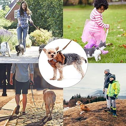 S, Marrone Imbracatura Traspirante e Confortevole per Cani e Gatti per Cinture di Sicurezza da Passeggio per Piccoli Animali Domestici Elinala Pettorine per Cani Taglia Piccolo Pettorina per Gatti