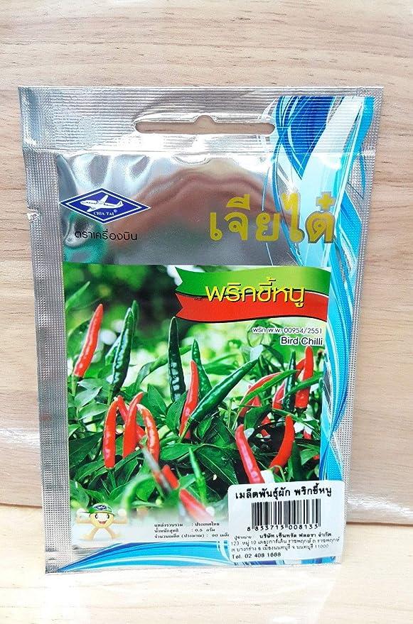 Shoopy Star NUEVO!! 20 semillas schleichera oleosa oleosa ...
