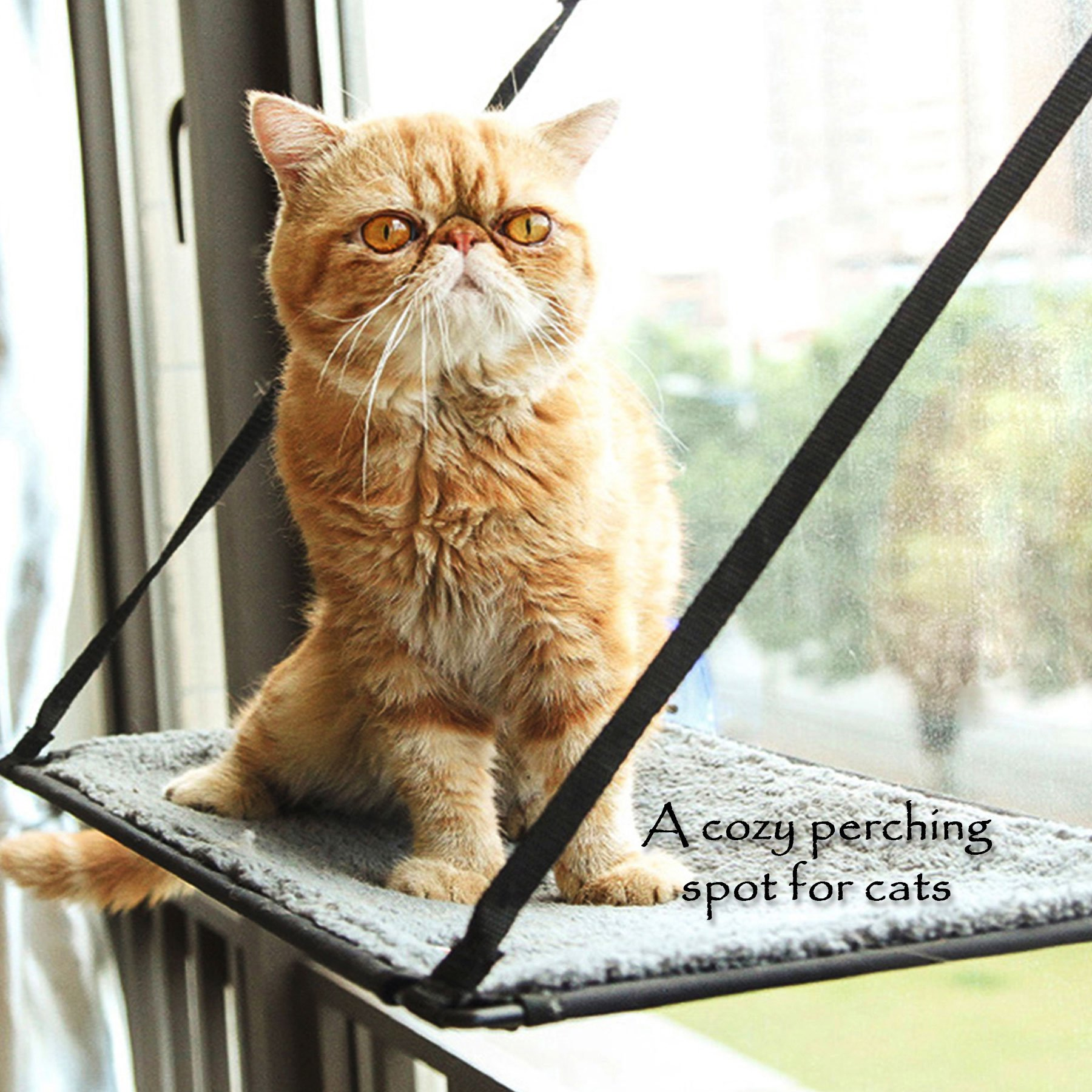 CO-Z Kitty Window Mount Cat Perches Window Cat Bed Resting Hammock with 4 Heavy Duty Suction Cups 88 lb. Capacity