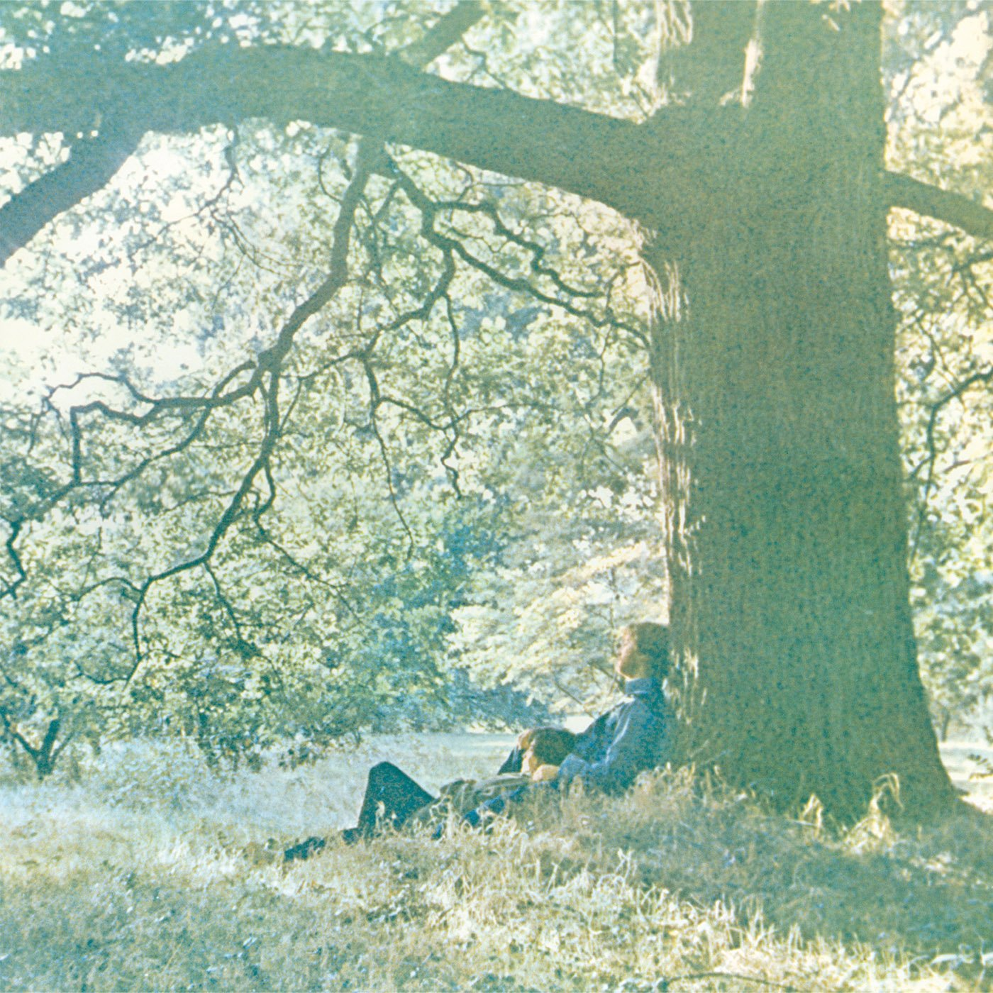 Yoko Ono - Plastic Ono Band (LP Vinyl)