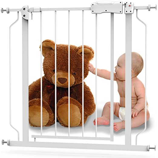 Baby Safety Gate with Walk-Thru Door Review