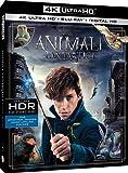 Animali Fantastici e Dove Trovarli (4K) (Blu-Ray)