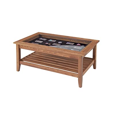 Manchester Wood Glass Top Display Coffee Table   Golden Oak
