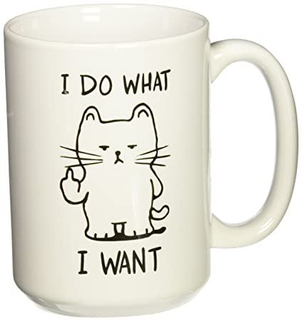 Amazon Funny Gift For Cat Lovers Christmas Birthday