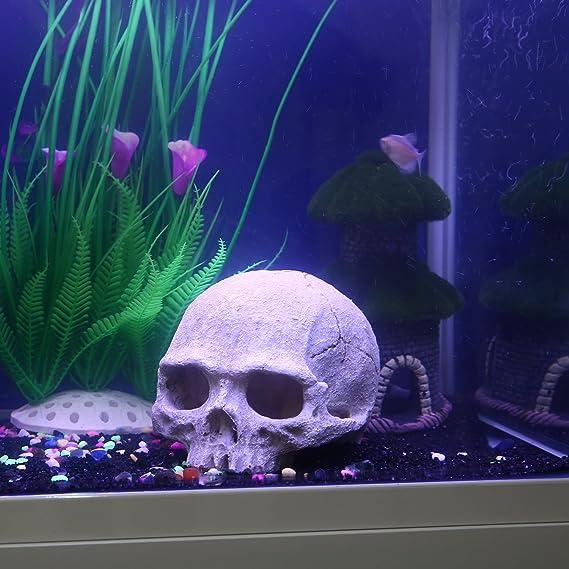 Pawaca Adorno de resina de calavera humana para acuario, pecera, color gris, 11 x 13,5 x 11 cm: Amazon.es: Productos para mascotas