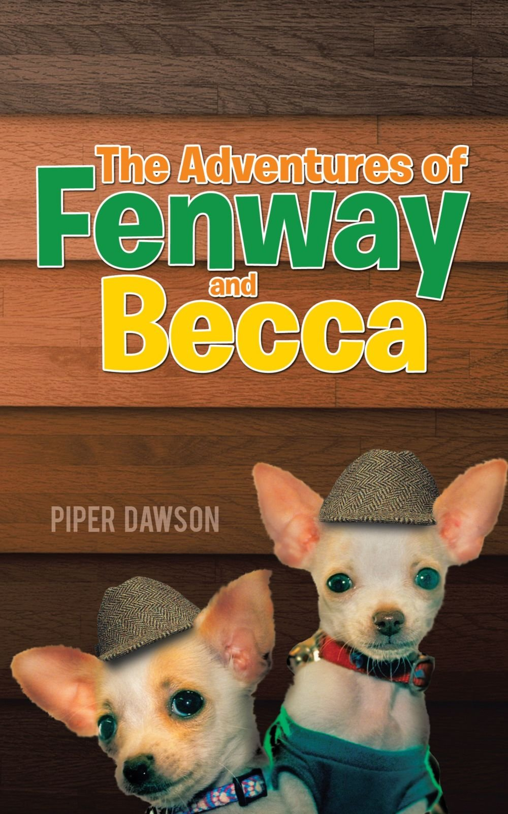 Download The Adventures of Fenway and Becca pdf epub