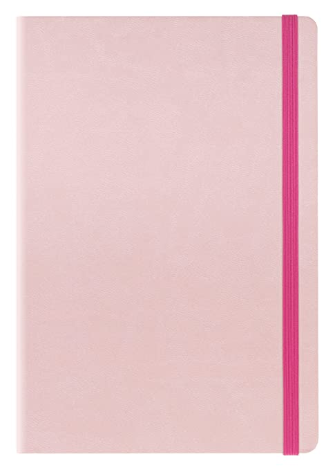 Amazon.com : Links ag121723 Agenda 12 Months, Pink : Office ...