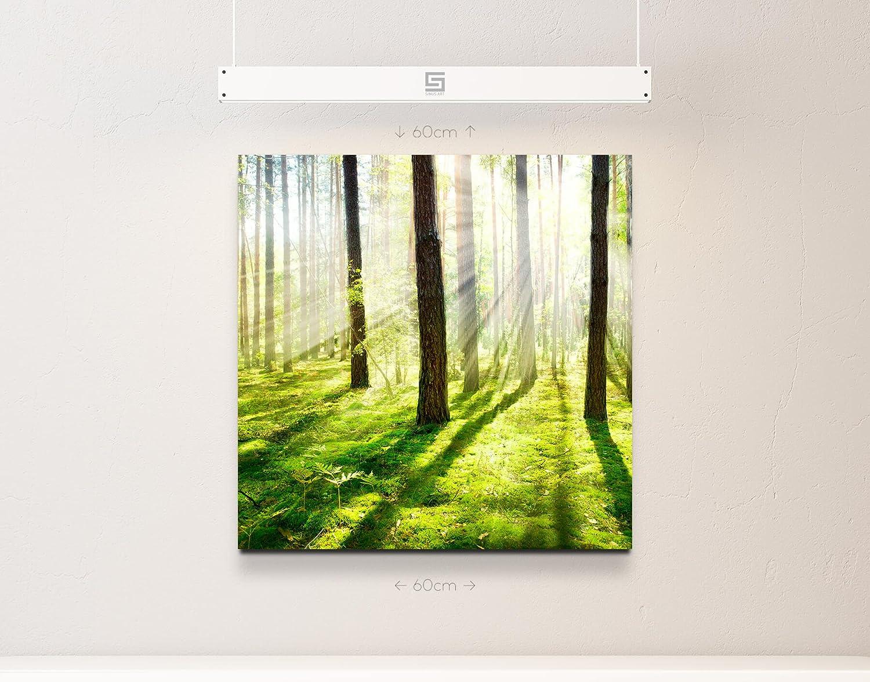 Eau Zone Wandbild auf Leinwand 130x90cmcm Sonnenstrahlen im Wald