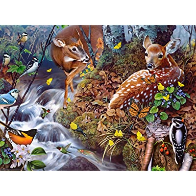 Fawn Song 1000 pc Jigsaw Puzzle by SUNSOUT INC: Toys & Games [5Bkhe2004485]