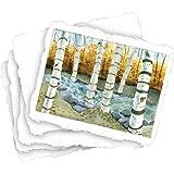 "Shizen Design SA-801 Punjab Acid-Free Handmade Watercolor Paper, 90 lb.,  100% Cotton, 9"" x 12"" Size, Natural White (Pack of 25)"
