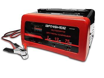 Amazon.com: Cargador de batería de coche 75 Amp 12 V motor ...