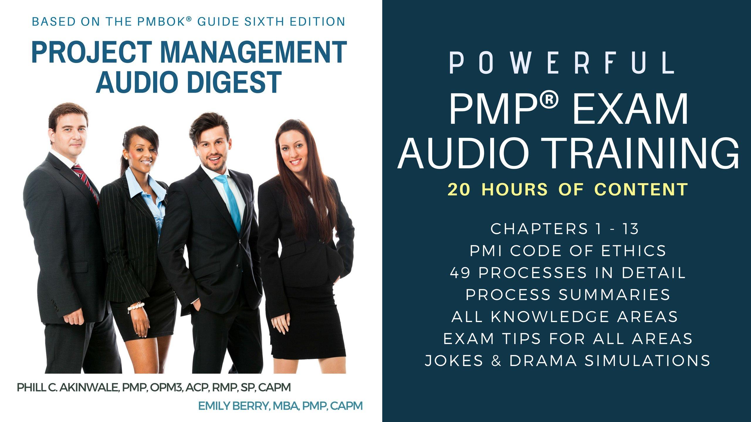 Project Management Audio Digest (20HR 24CD PMBOK Guide Sixth