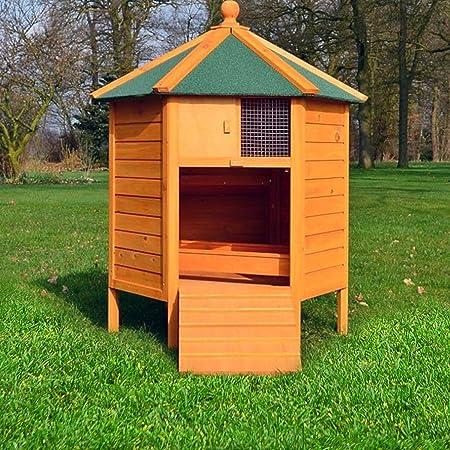 Gallinero Pavillion, gallinero, gallinas hogar, pato Establo: Amazon.es: Productos para mascotas