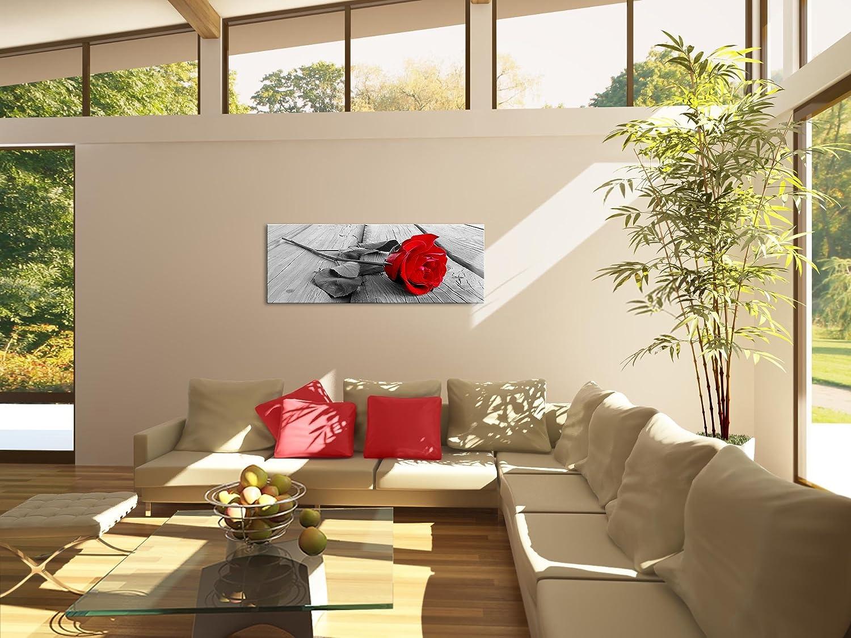 Amazon.de: bilder 110 x 40 cm !!! sensationspreis !!! xxl format ...
