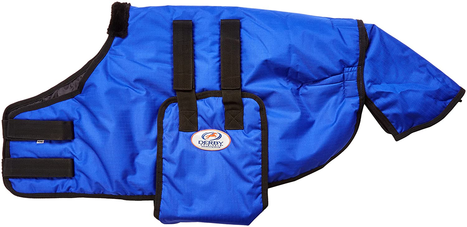 (Foal, Royal bluee) Derby Originals 600D Foal No Hardware Safety Winter Blanket Insulated at .