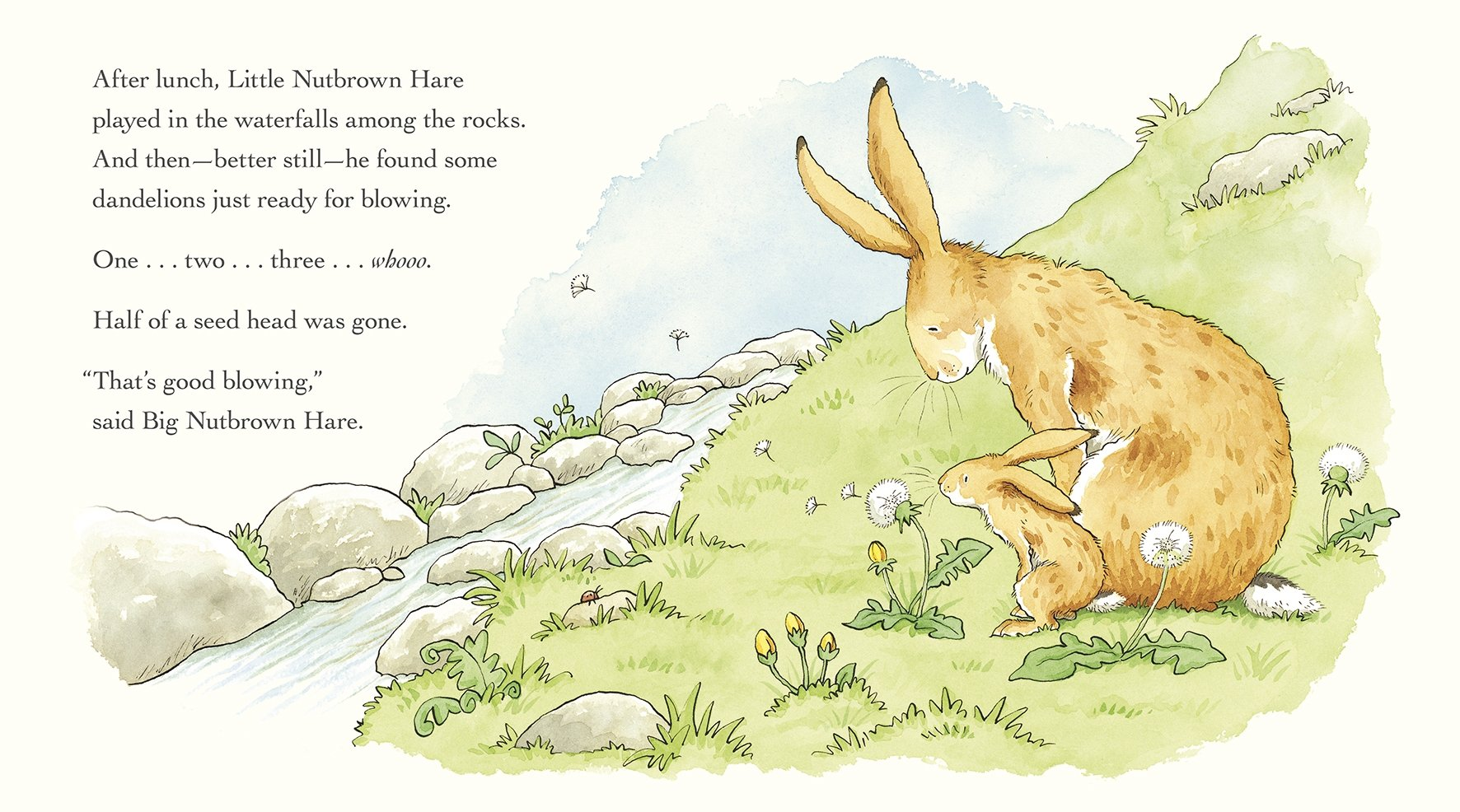 The Adventures Of Little Nutbrown Hare Guess How Much I Love You