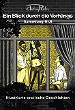 Reihe «Ein Blick durch die Vorhänge» mit 200 erotischen Geschichten. Sammelband Nr. 8 (Erzählungen 176-200): Illustrierte Sexgeschichten, die Ihre erotischen Fantasien anregen werden