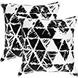 TreeWool, Cotton Canvas Ikat Triangle Geometric Accent Decorative Throw Pillow Covers (2 Cushion Covers; 20 x 20 Inches; Black & White)
