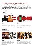 Sony Sound Forge Audio Studio 10 [Download]
