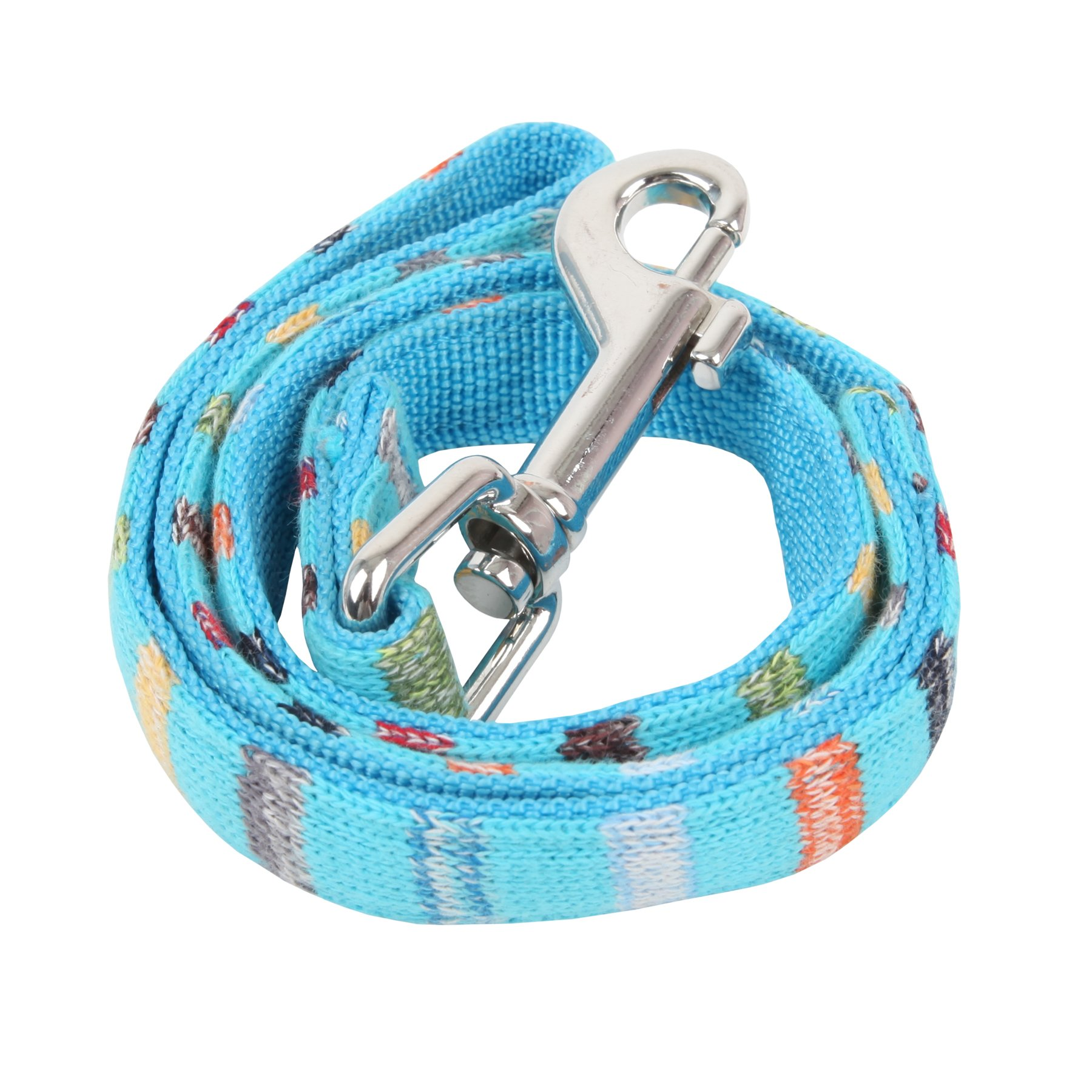 Puppia Authentic Watercolor Matching Lead Leash for Pets, Medium, Sky Blue