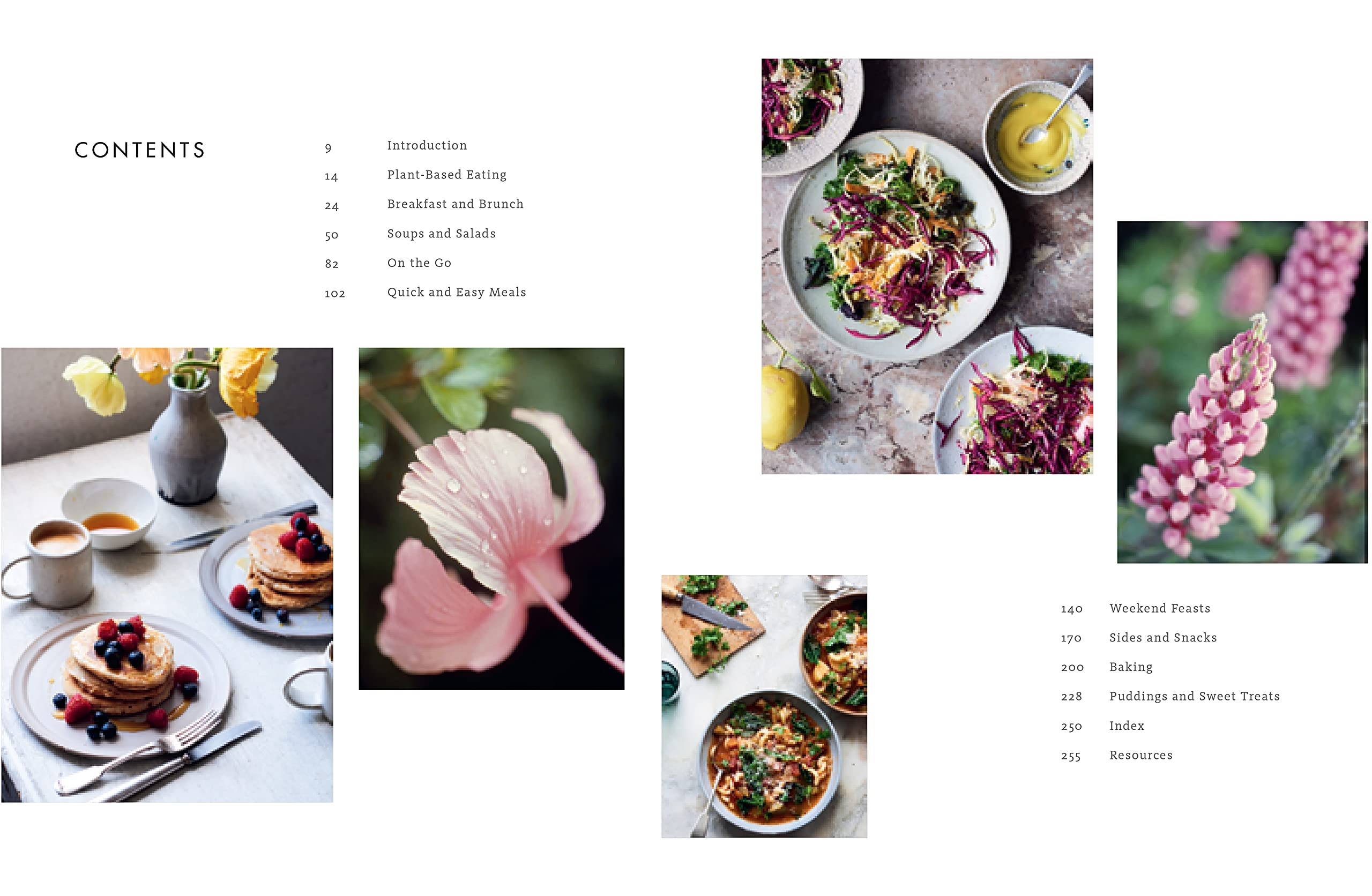 Linda McCartney's Family Kitchen: Over 90 Plant-Based Recipes to Save the  Planet and Nourish the Soul: McCartney, Linda, McCartney, Paul, McCartney,  Stella, McCartney, Mary: 9780316497985: Amazon.com: Books