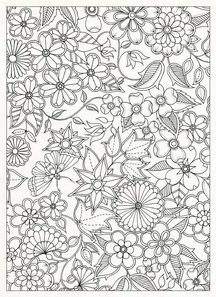 Secret Garden 20 Postcards Johanna Basford 0787721964056 Books