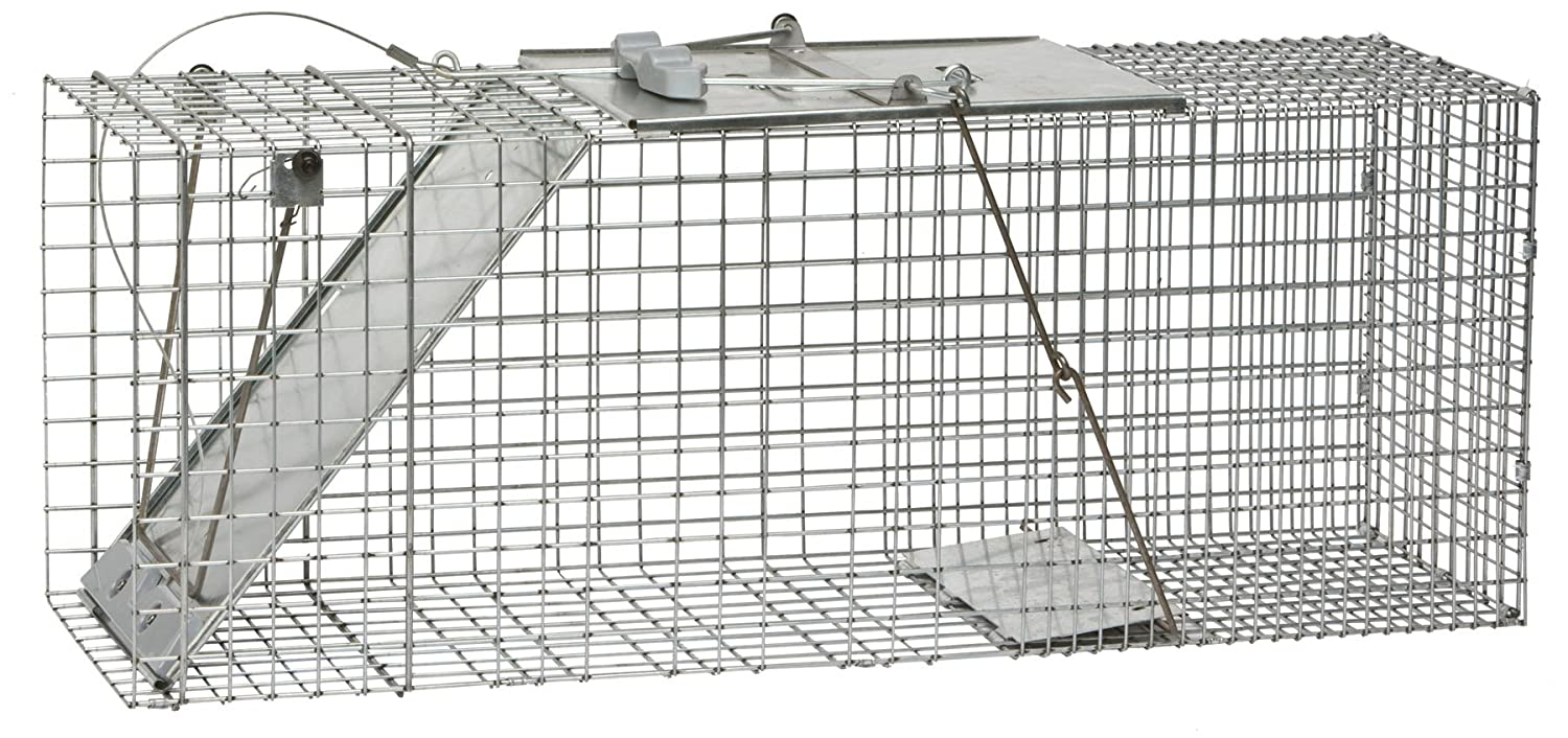Havahart 1085Easy Set One-Door Cage Trap for Raccoons, Stray Cats, Groundhogs, Opossums, and Armadillos