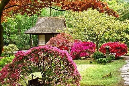 Rompecabezas De 1000 Piezas,Jardín Japonés De Primavera Para Niños Y Adultos Juego De Juguetes De Madera Educativo: Amazon.es: Hogar