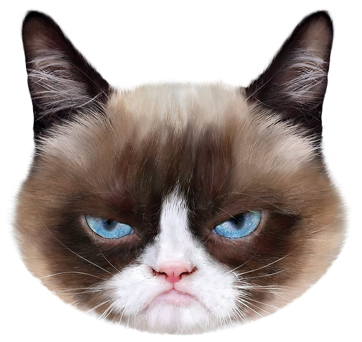 grumpy cat faces www pixshark com images galleries cat face silhouette clip art cat face clip art free