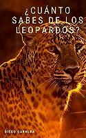 ¿Cuánto Sabes De Los Leopardos?: Datos Curiosos