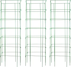 """Burpee Extra Large Heavy Gauge Tomato 3 Cages 