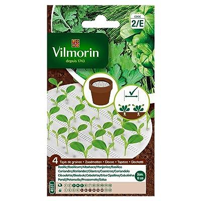 Seed Bag Carpet of 4 Aromatics, Green Vilmorin : Garden & Outdoor