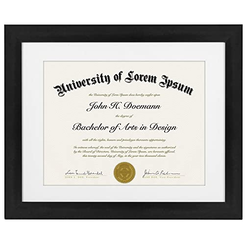 professional license frame amazon com