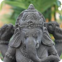 The texts in Sanskrit