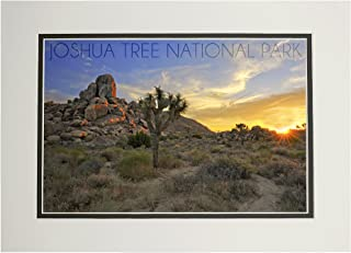 product image for Joshua Tree National Park, California - Sunrise (11x14 Double-Matted Art Print, Wall Decor Ready to Frame)