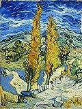 Artangle Vincent van Gogh, Poplars at Saint-Rémy, 1889 Print
