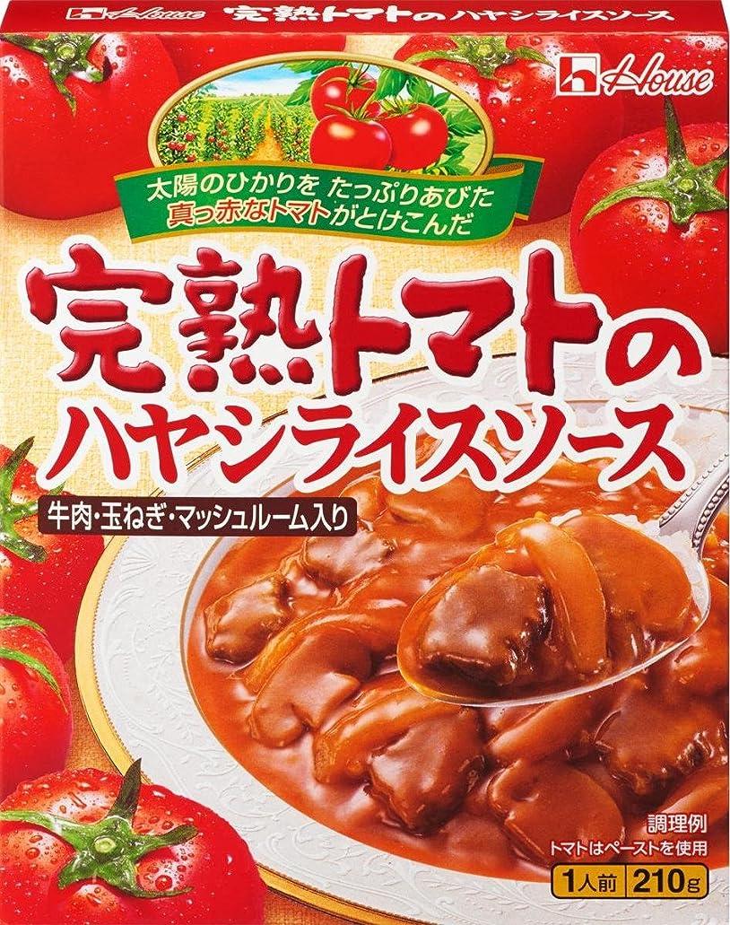 松明キャラクター懇願するエバラ ハヤシルウ 湿潤 業務用 1kg
