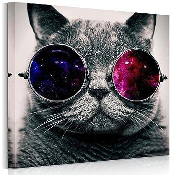 Rain Queen 1 Teilig Cool Cat Leinwandbilder Holzrahmen Riesen Bilder Kunstdruck Wandbild