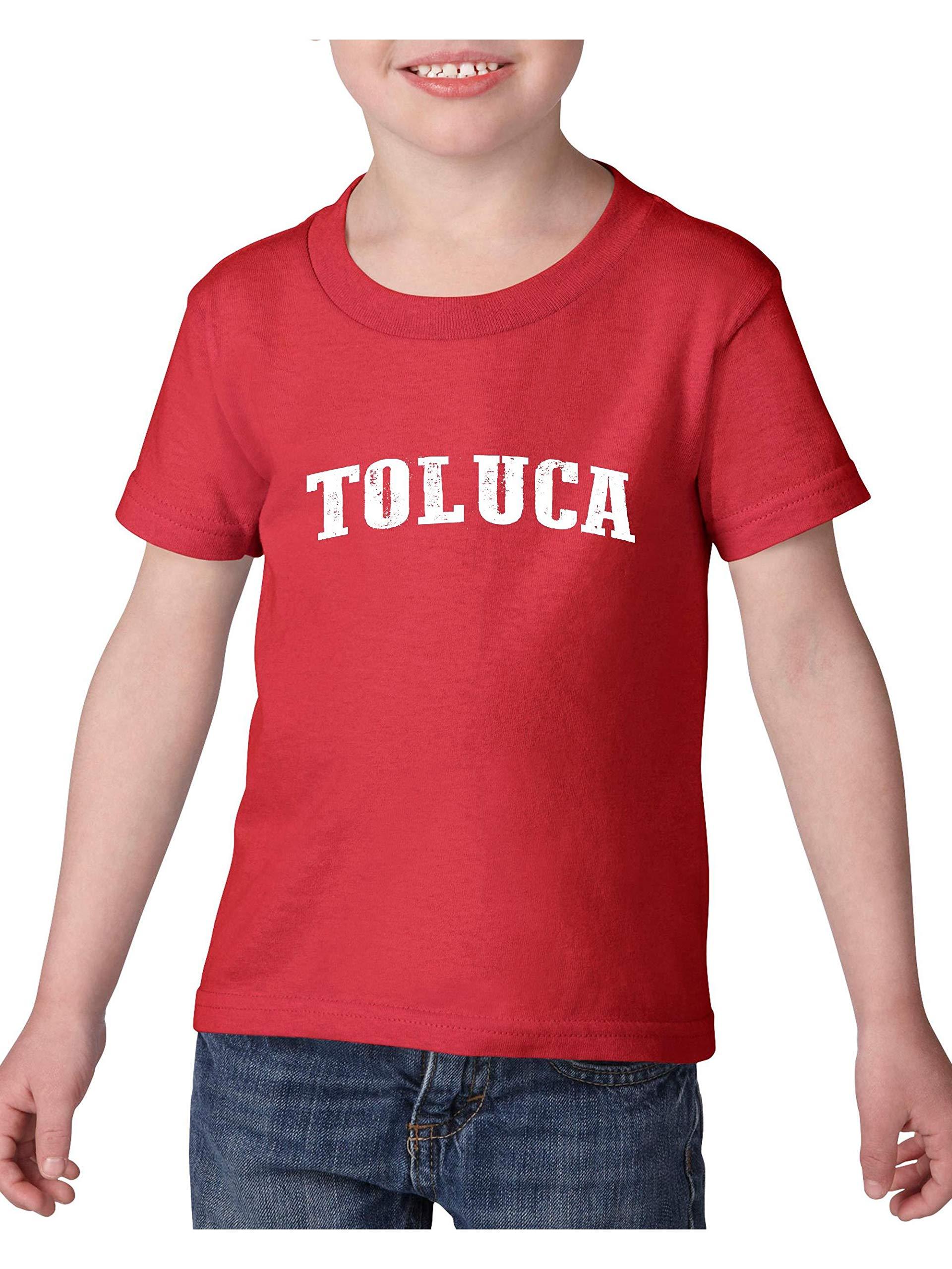 Mexico Cruise Family Vacation Gift Toluca Heavy Tee 2253 Shirts