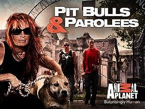 Watch Pit Bulls Parolees Season 7 Prime Video