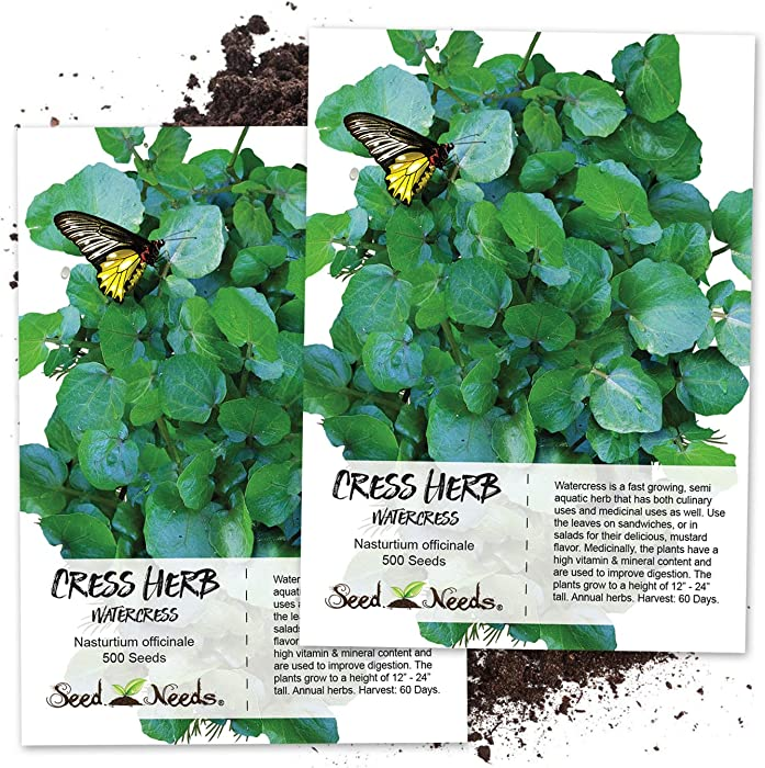 Seed Needs, True Watercress (Nasturtium officinale) Twin Pack of 500 Seeds Each Non-GMO