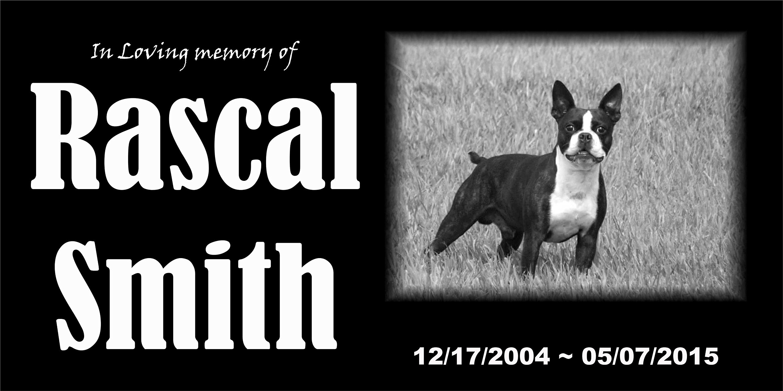 Personalized Pet Stone Memorial Marker Granite Marker Dog Cat Horse Bird Human 6'' X 12'' Boxer Personalised