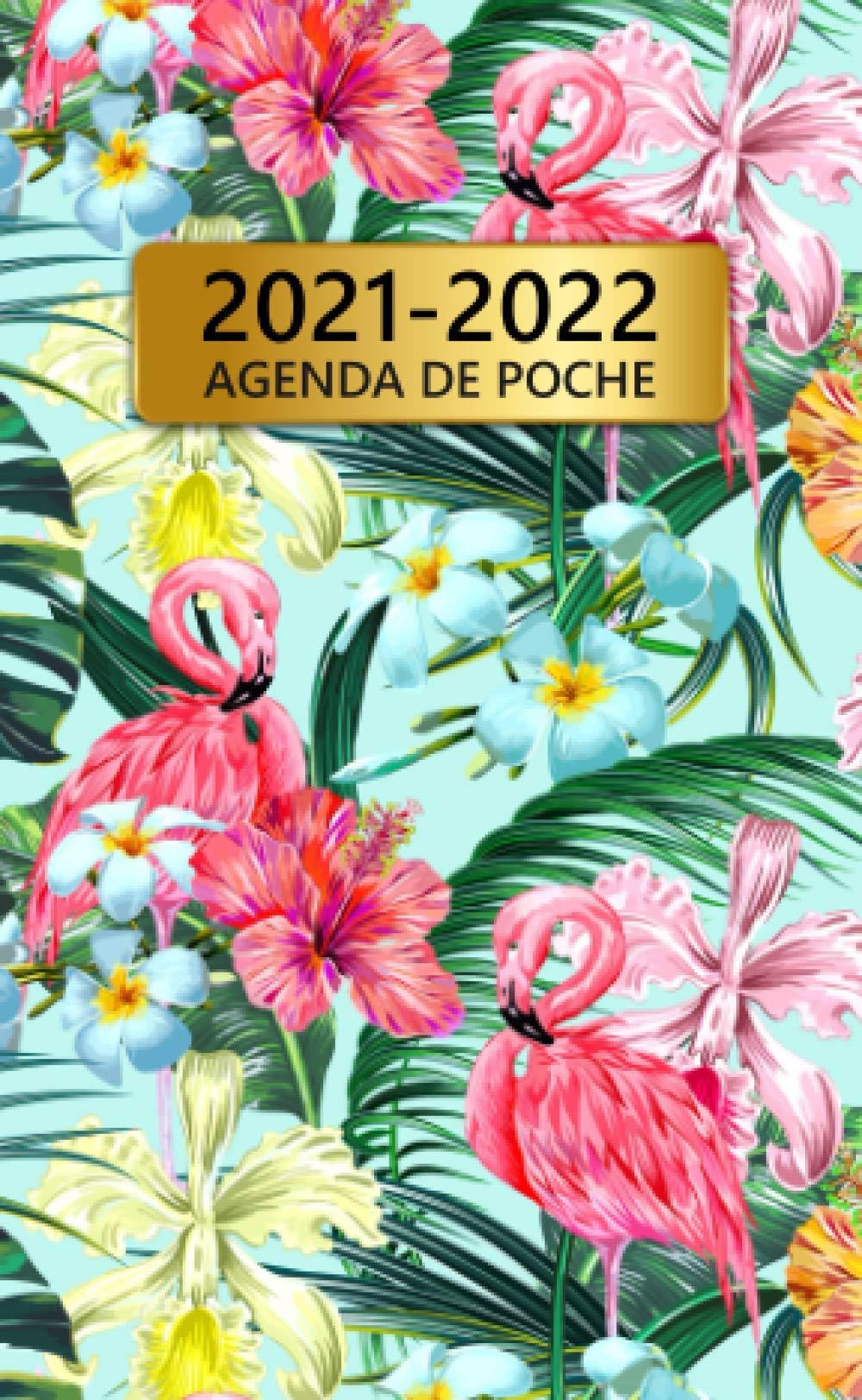 Amazon.com: 2021 2022 Agenda De Poche: 24 Mois Calendrier Mensuel