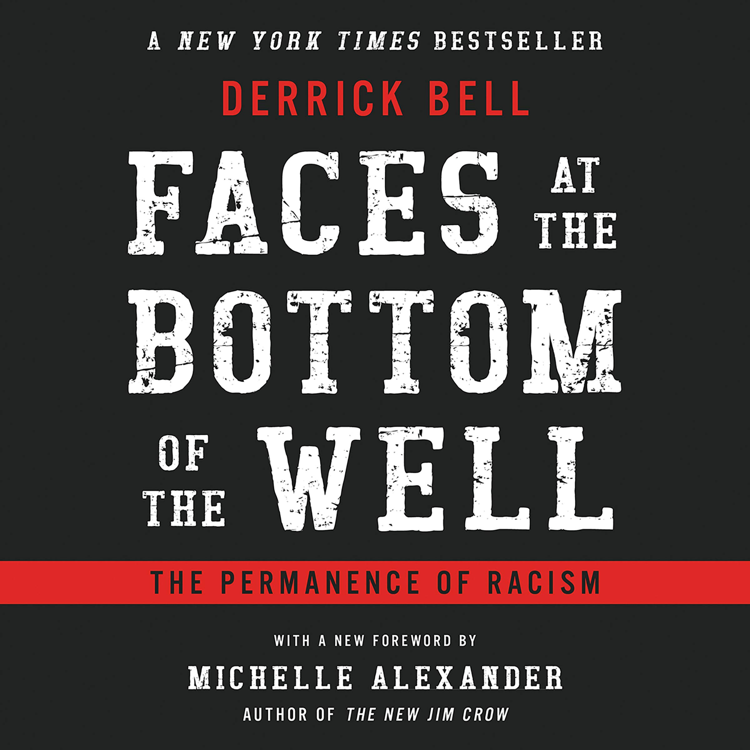 Faces At The Bottom Of The Well: The Permanence of Racism pdf