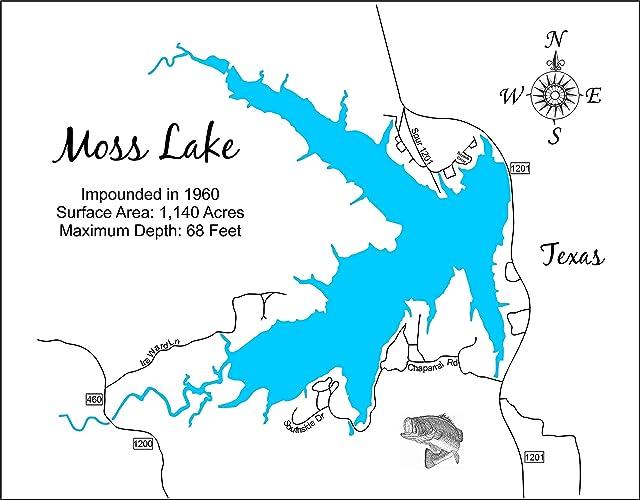 Amazon com: Moss Lake, Texas: Framed Wood Map Wall Hanging