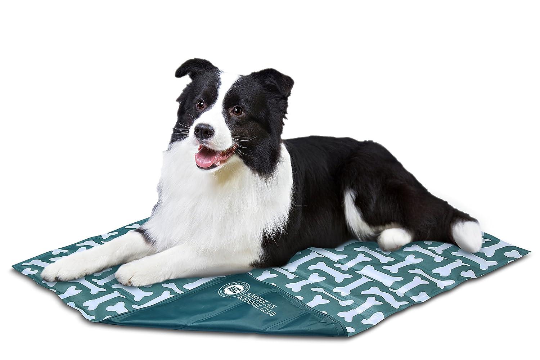 American Kennel Club AKC624verde Club reversibile osso grande tappetino di raffreddonnato Pet, 26 x 20 x .5