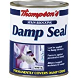 TDS750 750ml Thompsons Damp Seal