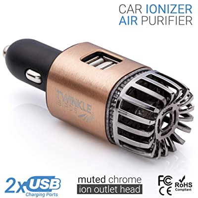 TWINKLE BIRDS Car Air Purifier Ionizer - 12V Plug-in Ionic Anti-Microbial Car Deodorizer with Dual USB Charger - Smoke Smell, Pet and Food Odors, Allergens, Viruses Eliminator for Car (Matte Copper): Automotive