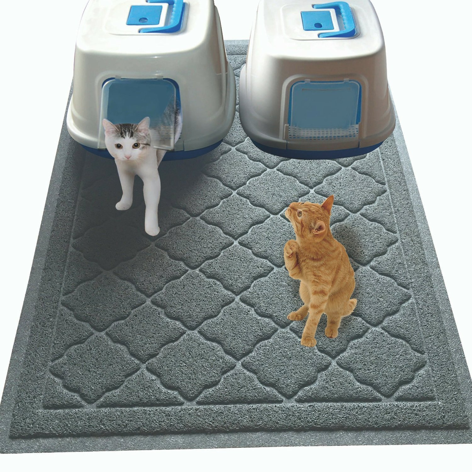 what is the best cat feeder
