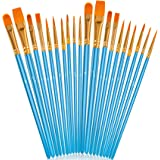 Acrylic Paint Brushes Set, 20Pcs Artist Paintbrushes Paint Brushes for Acrylic Oil Watercolor Canvas Body Face Halloween…